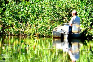 Pesca do Robalo