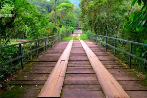 A Ponte Velha e o descaso com o patrimônio histórico brasileiro