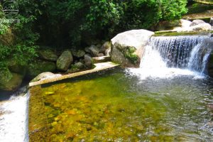 Read more about the article Piscinas do Rio Bananal